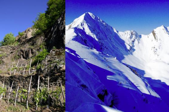 Valtellina Valgerola