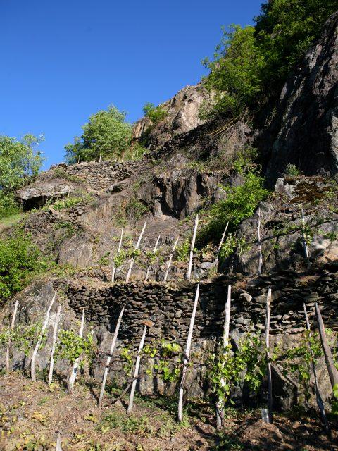 Sassella Rocks