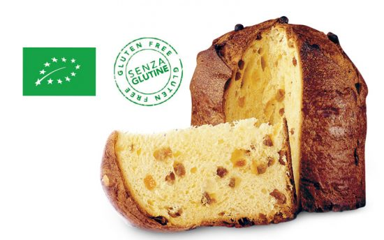Gluten-Free Bio Panettone